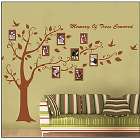 ZOOYOOrremovable colorful tree and photo frame wall sticker home decor Decal Art Mural wall stickers Home Decor