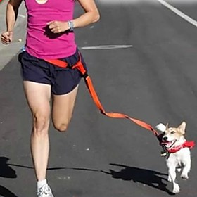 Dog Hands Free Leash Adjustable/Retractable / Running / Hands free Solid Red / White / Green / Pink / Purple Nylon 2104136