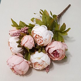 European Large Flower Peony Flower