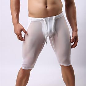 Men's Mesh / Breathable Printing Boxer briefs/Sexy Transparent Gauze