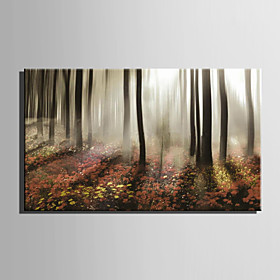 Canvas Art Landscape Morning Mist