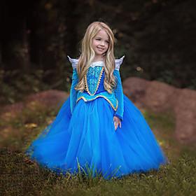 Princess / Cinderella / Fairytale Dress Christmas / Masquerade Festival / Holiday Halloween Costumes Blue / Pink Color Block Dresses / Mesh Adorable 6453631
