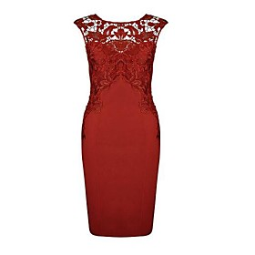 Women's Going out Slim Sheath Dress - Solid Colored Red, Lace 6752469