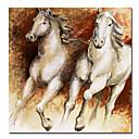 animal print caballos lienzo con marco de estirado