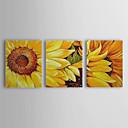 óleo pintada a mano de pintura de los girasoles floral flor del ciruelo conjunto de 3 con marco de estirado-1307 fl0183