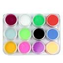12 colores de la mezcla de acrílico polvo del constructor Nail Art Set