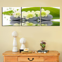 "12 ""-24"" Country Style Flower reloj de pared en la lona 3pcs"