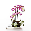 "15""H Orchid in Ceramic Vase-2 Colours Available"