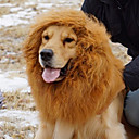 Cute Lion Hair Accessories for Pets Dogs