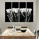 Image For Stampa trasferimenti su tela di arte contemporanea White Tulip Set di 4