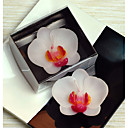 Moth Orchid Candle