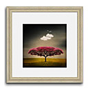 Dreaming Tree Paisaje Framed Canvas