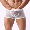 Mens Sheer White Boxer Briefs