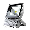 220V 100W LED blanco cálido al aire libre luz de inundación impermeable