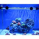 19cm Azul de ahorro de energía LED ultrabrillante luz del acuario pecera Luces de buceo