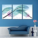 Stretched Canvas Art The Colorful Feathers of Beautiful Set of 3