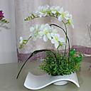 "24 ""H Phalaenopsis en Waved Jarrón de cerámica"
