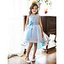 A-line Jewel Asymmetrical Flower Girl Dress