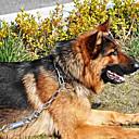 150-250g chukchi acero inoxidable p monocular cadena para mascotas perros (l)