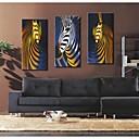 abstracto cebra 30x galería 50x100cm 60cm 40x80cm impresión lienzo envuelto conjunto personalizado arte de 3