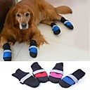 stylish-luminous-breathable-mesh-cloth-to-keep-warm-soft-bottom-for-pets-dogs