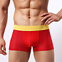 Mens Sexy Boxers/Mesh Underpants /Breathable