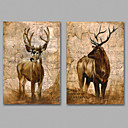 Image of Set Tela / Unframed Stampa trasferimenti su tela Astratto / Animali Classico,Due Pannelli Tela Orizzontale Stampa artistica Wall DecorFor