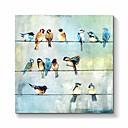 Image of quadri su tela con uccelli: uccelli colorati che dipingono su tela per camerette (24 x 24 x 1 pannello)