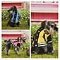 pet Kleidung der neue Fonds 2014 Herbstwinter Haustier Baseballuniform Qiu dong Outfit Baumwolle 6160