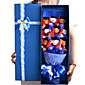 Dr. Bear Doll Gift Cartoon Bouquet Graduation Present 3204
