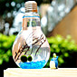 Simple Micro Landscape Glass Bottle Algae Ecological Landscape Plants Creative Potted Birthday Is Valentine'S Day Gift 3204