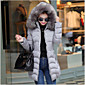 Women's Solid Red / Black / Gray / Green Down Coat,Simple / Street chic Hooded Long Sleeve 3204