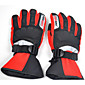 Motorcycle Racing Riding Gloves Nontoxic Odorless Water Resistant Breathable Slip Drop Resistance 3204
