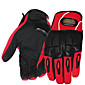 Motorcycles Electric Cars Gloves Off Road Racing Gloves Anti Fall Anti-Skid All Finger Gloves  Pro-Biker Genuine 3204