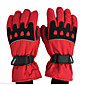 Motorcycle Gloves Winter Windproof Waterproof Warm Cotton Gloves 3204