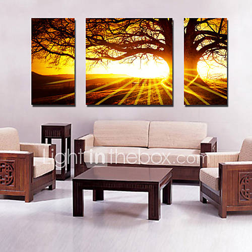 Canvas Set Of 3 Landscape Big Tree In Sunset Stretched