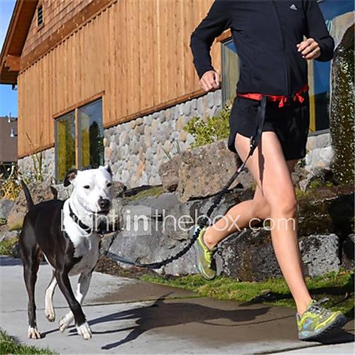 Пояс для бега с собакой