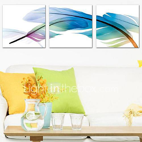 Stretched Canvas Print Art Still Life Feather Set of 3