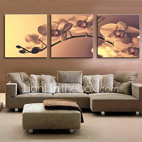 Stretched canvas art floral tender orchid set of 3 695625 2017 - Quadri sopra divano ...