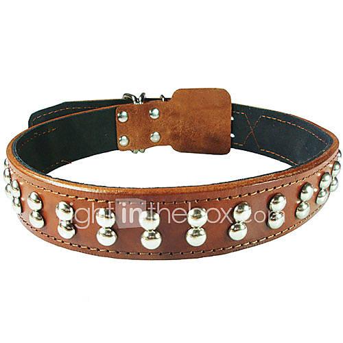 Cody vache durable rivets en cuir collier pour animaux chiens