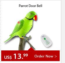 Parrot Door Bell