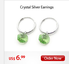 Crystal Silver Earrings