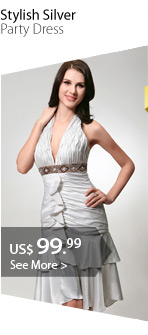 Stylish Silver Party Dress