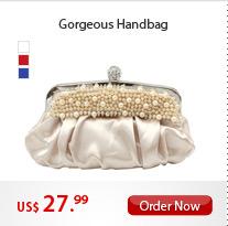 Gorgeous Handbag