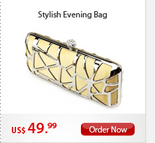 Stylish Evening Bag