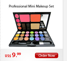 Professional Mini Makeup Set