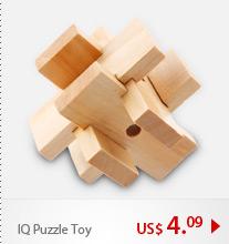 IQ Puzzle Toy