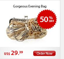 Gorgeous Evening Bag
