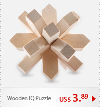Wooden IQ Puzzle