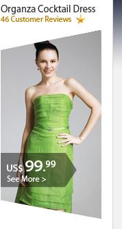 Organza Cocktail Dress